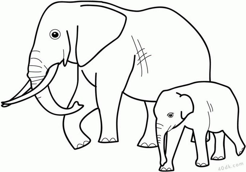 40dk.com filler boyama sayfası  (224)