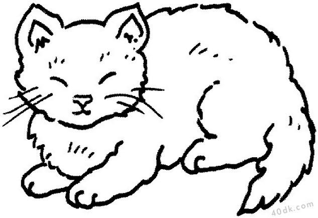40dk.com kedi boyama sayfası  (874)