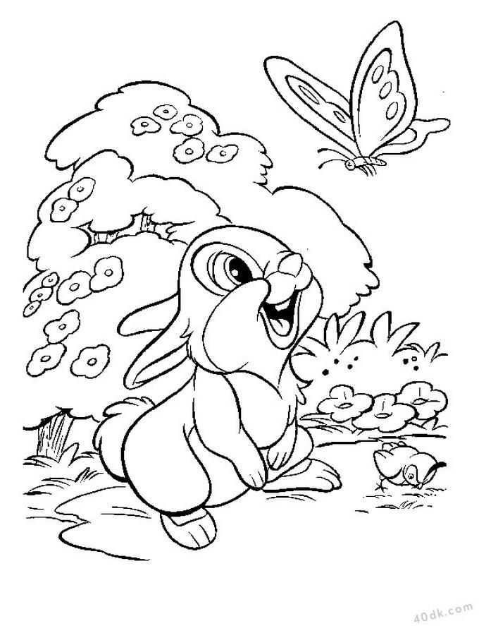 Tav an boyama sayfas 597 40dk e itim bilim k lt r sanat - Coloriage lapin fleur ...